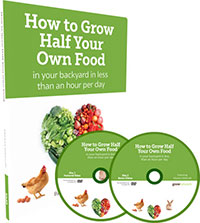 how to grow half your own food